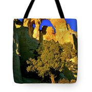Grosvenor Arch At Sunset Tote Bag