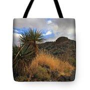 Grosvenor Hill Arizona Tote Bag