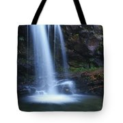 Grotto Falls Great Smoky Mountains Tote Bag