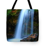 Grotto Falls Tote Bag