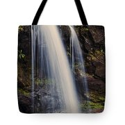 Grotto Falls Tennessee Tote Bag