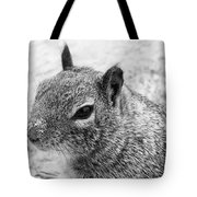 Ground Squirrel With Sandy Nose Tote Bag