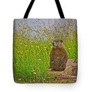 Groundhog At Point Amour In Labrador Tote Bag