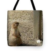 Groundhog With Shadow Tote Bag