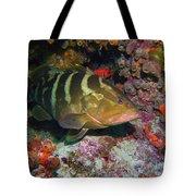 Grouper Tote Bag