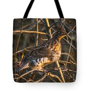 Grouse In A Tree Tote Bag