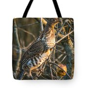 Grouse In An Apple Tree Tote Bag