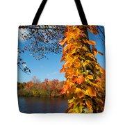 Growing Colors Tote Bag