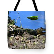 Growing Up In Florida Tote Bag