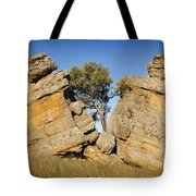 Grown Apart Tote Bag