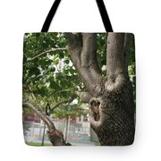 Growth On The Survivor Tree Tote Bag