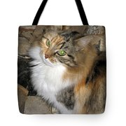 Grumpy Kitty With Emerald Eyes Tote Bag