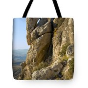 Guadalupe Peak Trail Tote Bag