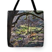 Guadalupe State Park Tote Bag