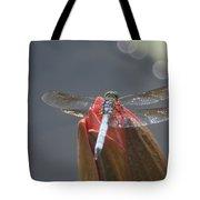 Guard Dragonfly... Tote Bag