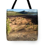 Guardian Of The Dunes Tote Bag