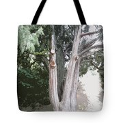 Guardian Of The Path Tote Bag