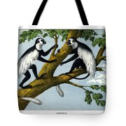 Guereza Monkey Tote Bag