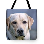 Guide Dog In Training Tote Bag