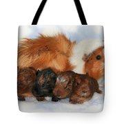 Guinea Pig Family Tote Bag