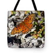 Gulf Fritillary Butterfly - Agraulis Vanillae Tote Bag