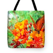 Gulf Fritillary Butterfly On Pride Of Barbados Tote Bag