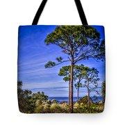 Gulf Pines Tote Bag