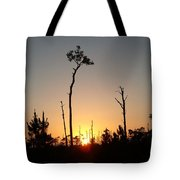 Gulf Shores Sunset Tote Bag