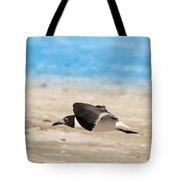 Gull At Lido Beach Iv Tote Bag