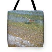 Gull Floating Tote Bag