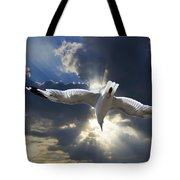 Gull Flying Under A Radiant Sunburst Tote Bag