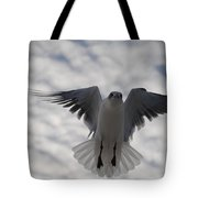 Gull From Below Tote Bag