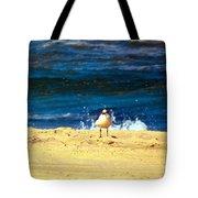 Gull Goer Tote Bag