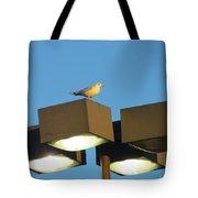 Gull On Guard Tote Bag