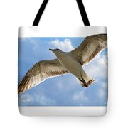 Gull - Out Of Bounds Tote Bag