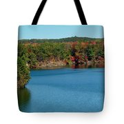 Gull With Splendid View Tote Bag