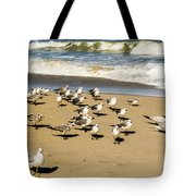 Gulls At The Beach Tote Bag