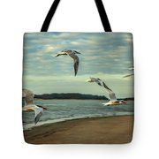 Gulls In Flight Tote Bag