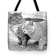 Gutter Kitties Four Tote Bag