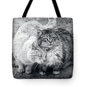 Gutter Kitties Nine Tote Bag