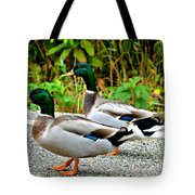 Guys Day Out On The Town Tote Bag