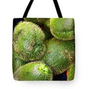 Hairy Peary Chayote Squash By Diana Sainz Tote Bag