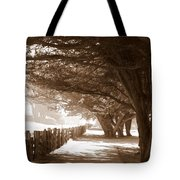 Half Moon Bay Pathway Tote Bag