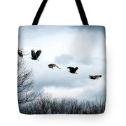 Half Second Of Flight Tote Bag