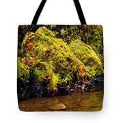 Half The Punchbowl Tote Bag