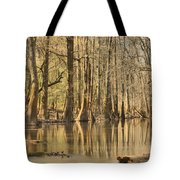 Hall Of Cypress Tote Bag