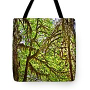 Hall Of Mosses In Hoh Rain Forest In Olympic National Park-washington Tote Bag