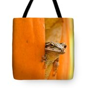 Halloween Surprise  Tote Bag by Jean Noren