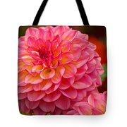 Hamari Rose - Dahlia Tote Bag