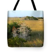 Hammocks In The Everglades Tote Bag
